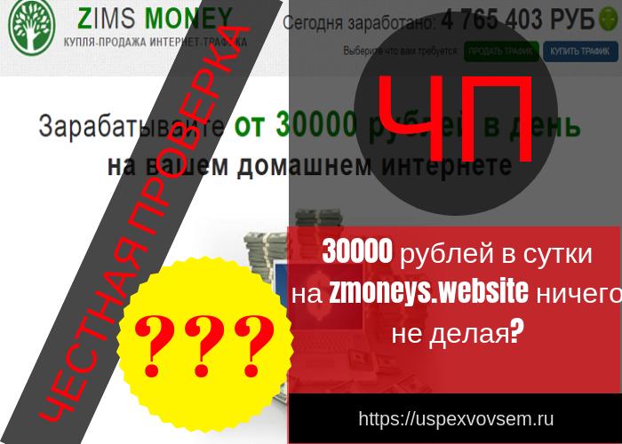 metod-zarabotka-kampanii-zims-money-zakljuchaetsja-v-jako-by-v-pereprodazhe-uslug-internet